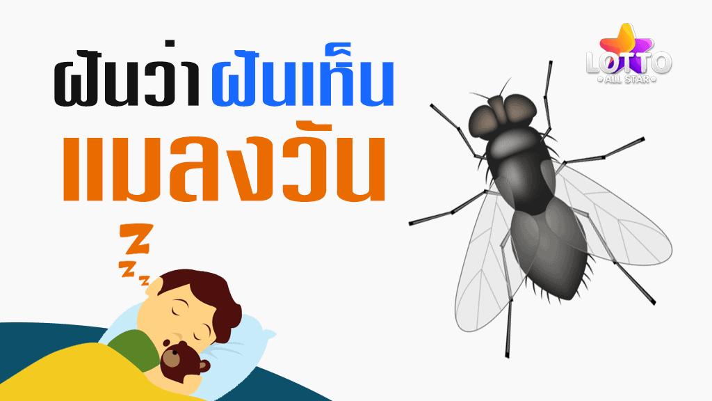 ฝันเห็นแมลงวัน